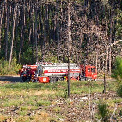 Freiwillige Feuerwehr im Einsatz