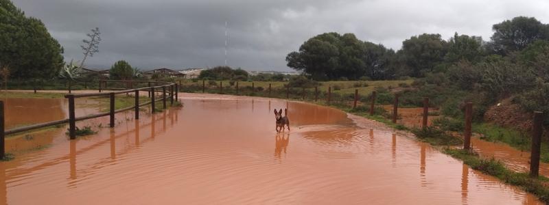 Verkehr Portugal Autofahren bei Regen
