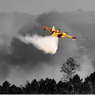 waldbrand loeschflugzeug