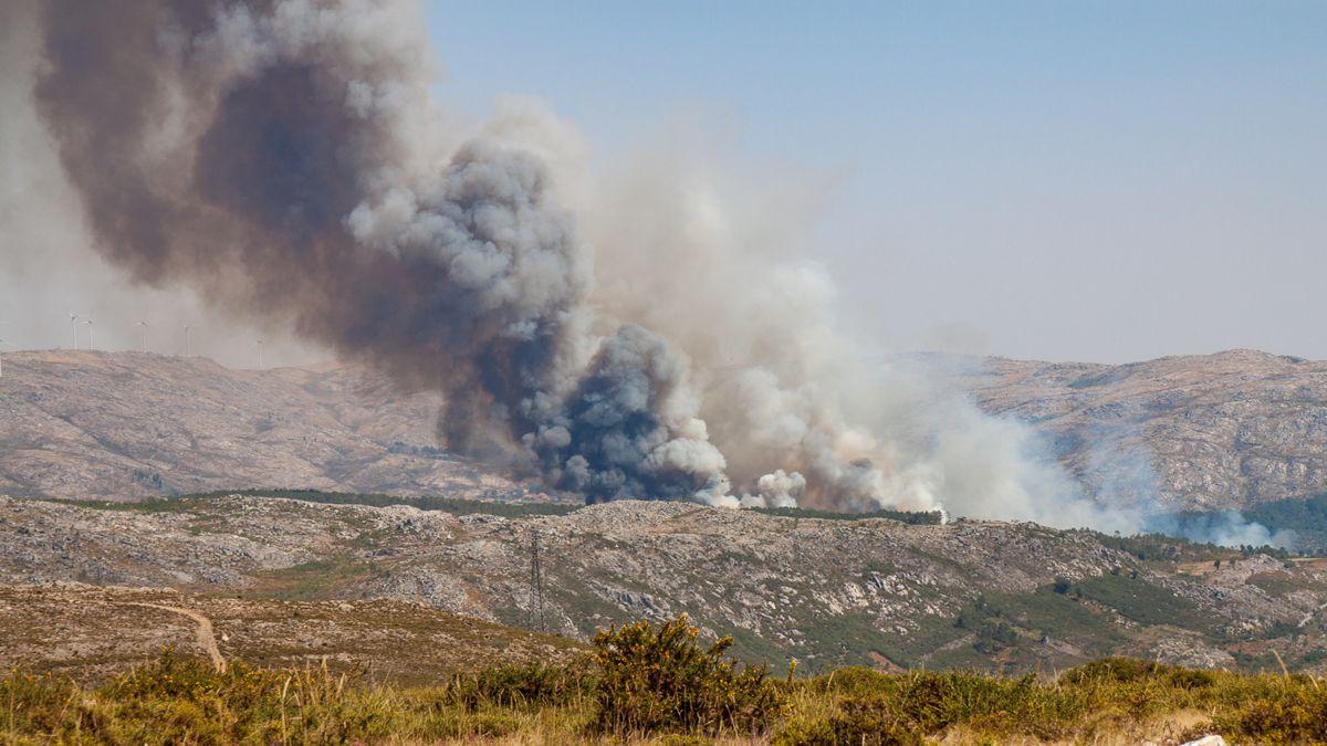 Waldbrände Portugal Karte.Waldbrände In Portugal Ursachen Folgen